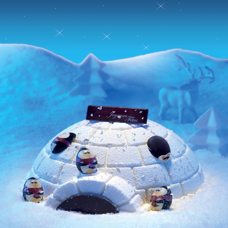 L'igloo de la Roimainville